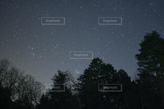 夜の写真・画像素材[387017]