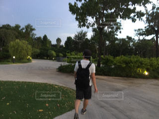 公園の写真・画像素材[378076]