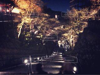 夜の写真・画像素材[377678]