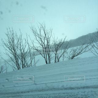 雪の写真・画像素材[378147]