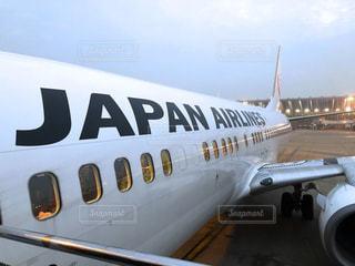 JAL  Japan Airlineの写真・画像素材[976987]