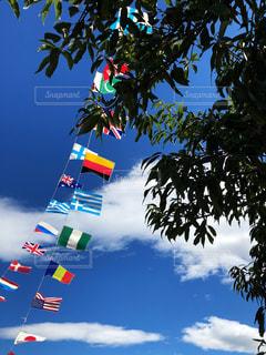 青空と国旗の写真・画像素材[2186883]