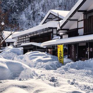冬の写真・画像素材[379065]