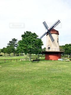 背景の木と大規模なグリーン フィールドの写真・画像素材[715248]