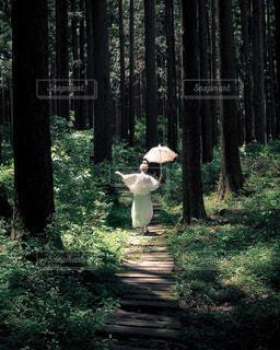 女性の写真・画像素材[601582]