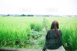 フィールドに座る人の写真・画像素材[724241]