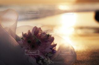 海に捧げる花束の写真・画像素材[753965]