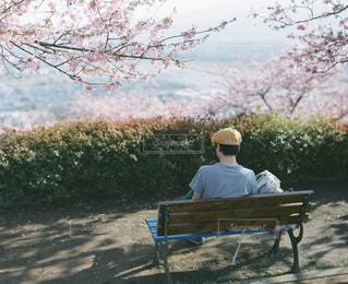 公園のベンチに座っている男の写真・画像素材[1057323]
