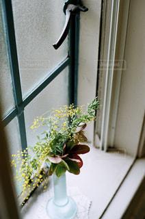 窓際の花の写真・画像素材[1138933]
