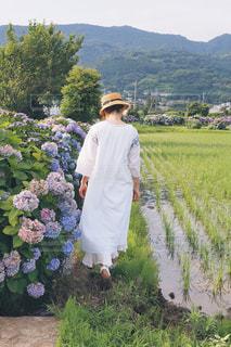 紫陽花と女の子の写真・画像素材[1314649]