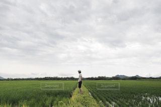 緑豊かな緑のフィールドの上に立つ男性の写真・画像素材[1314653]
