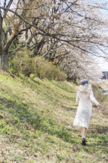 春を駆け抜けるの写真・画像素材[2021652]