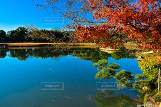 風景の写真・画像素材[381280]