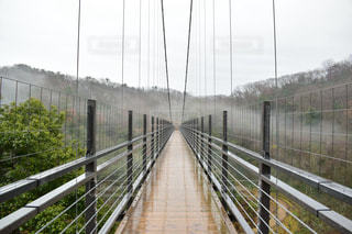 雨の写真・画像素材[381398]