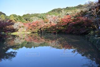 風景の写真・画像素材[381760]
