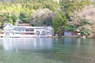 金鱗湖 - No.925146