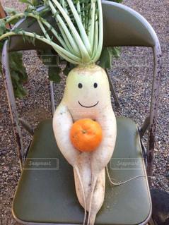 野菜の写真・画像素材[388941]