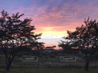 夕日の写真・画像素材[1265269]