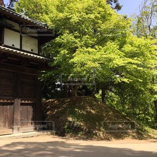 青森 - No.380900