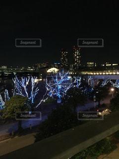 夜景の写真・画像素材[381782]