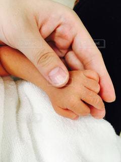 親子の手の写真・画像素材[982339]