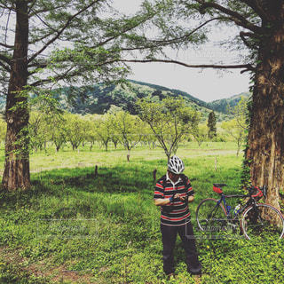 自転車の写真・画像素材[536772]