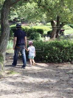 公園の写真・画像素材[383043]