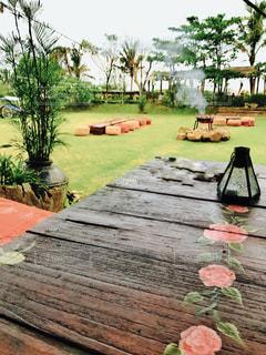 庭の写真・画像素材[383080]