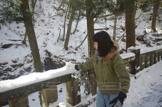 雪の写真・画像素材[385749]