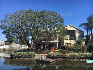 背景の水の庭の写真・画像素材[921924]
