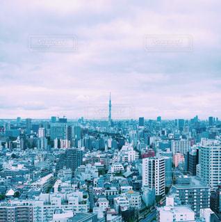 大都市の風景 東京 スカイツリー 観光 国内旅行 日本の写真・画像素材[1249055]