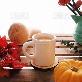 10月1日 コーヒーの日 秋 パンプキン ツリー バターナッツかぼちゃの写真・画像素材[1501031]