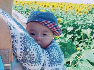 椅子に座っている赤ちゃんの写真・画像素材[1393876]