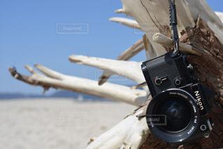海の写真・画像素材[397234]
