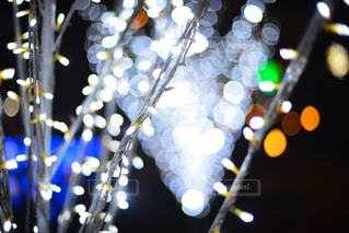 夜の写真・画像素材[406362]