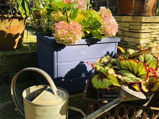 テーブルの上に花の花瓶の写真・画像素材[3205347]