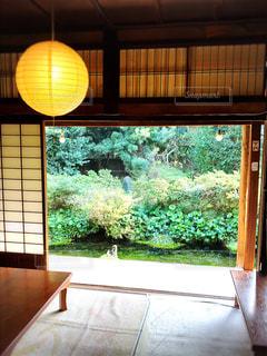 カフェの写真・画像素材[406262]