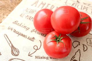 トマトの写真・画像素材[385225]