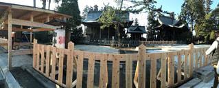 晴れ,お正月,お参り,阿蘇神社