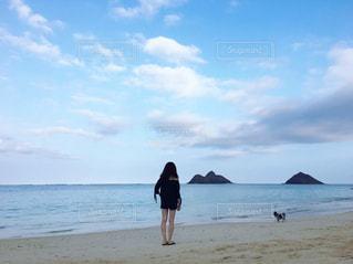 ハワイ - No.439161