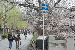 京都 - No.386920
