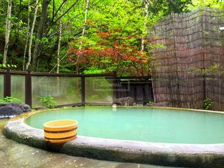 温泉の写真・画像素材[385916]