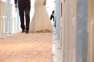結婚式の写真・画像素材[388491]