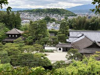 銀閣寺の写真・画像素材[3361351]