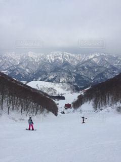 冬の写真・画像素材[578230]