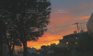 トワイライトの写真・画像素材[772532]
