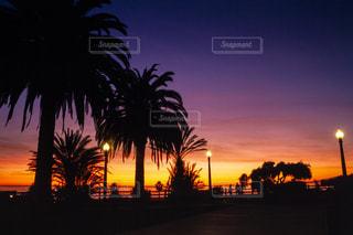 サンタモニカの夕暮れの写真・画像素材[396812]