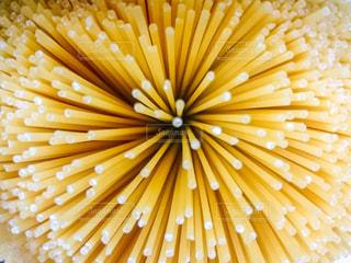 食べ物の写真・画像素材[399257]