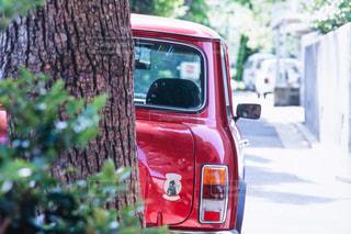 駐車中の写真・画像素材[794803]