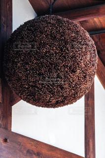 杉玉の写真・画像素材[794812]